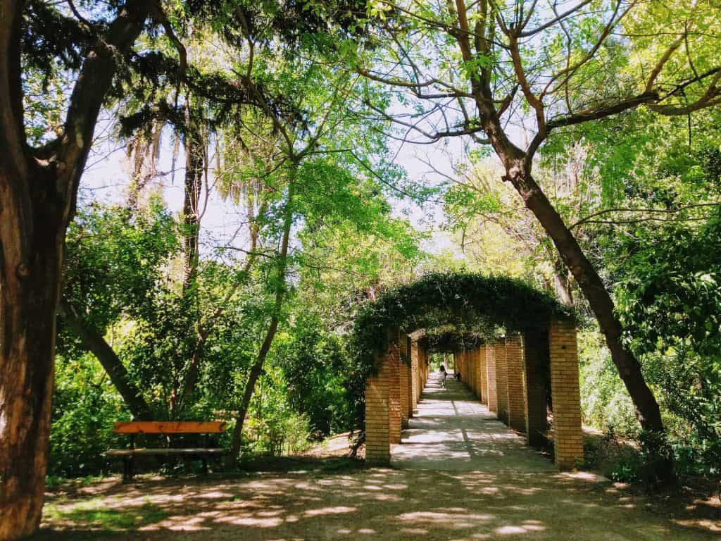 ogrod narodowy ateny